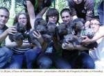 équipe du parc Argonne - Wolf (Other)